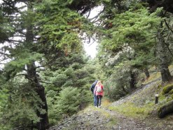 papanikola activities-hiking